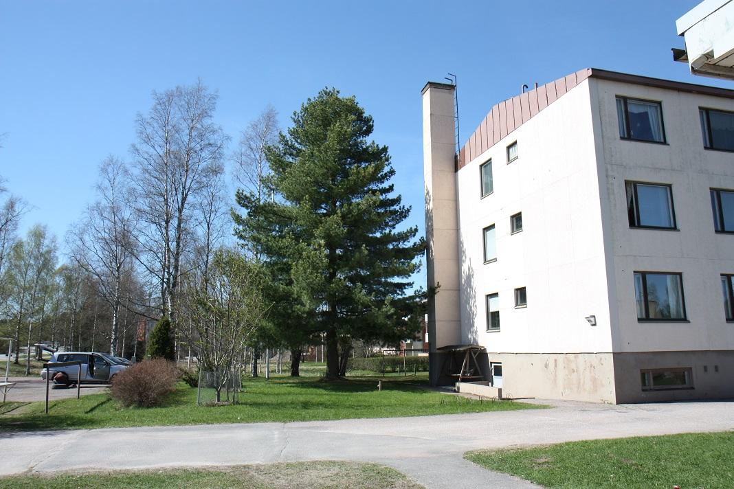 Hirvikoskentie 213 B, Loimaa