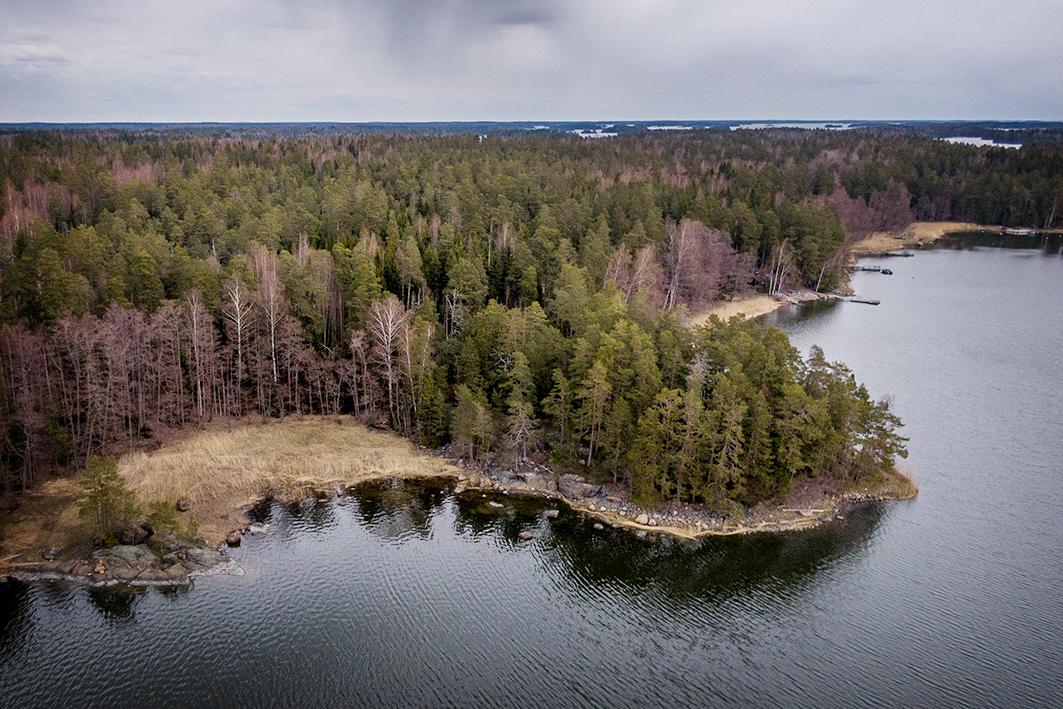 Porvoo, Pellinki, Härkäniementie