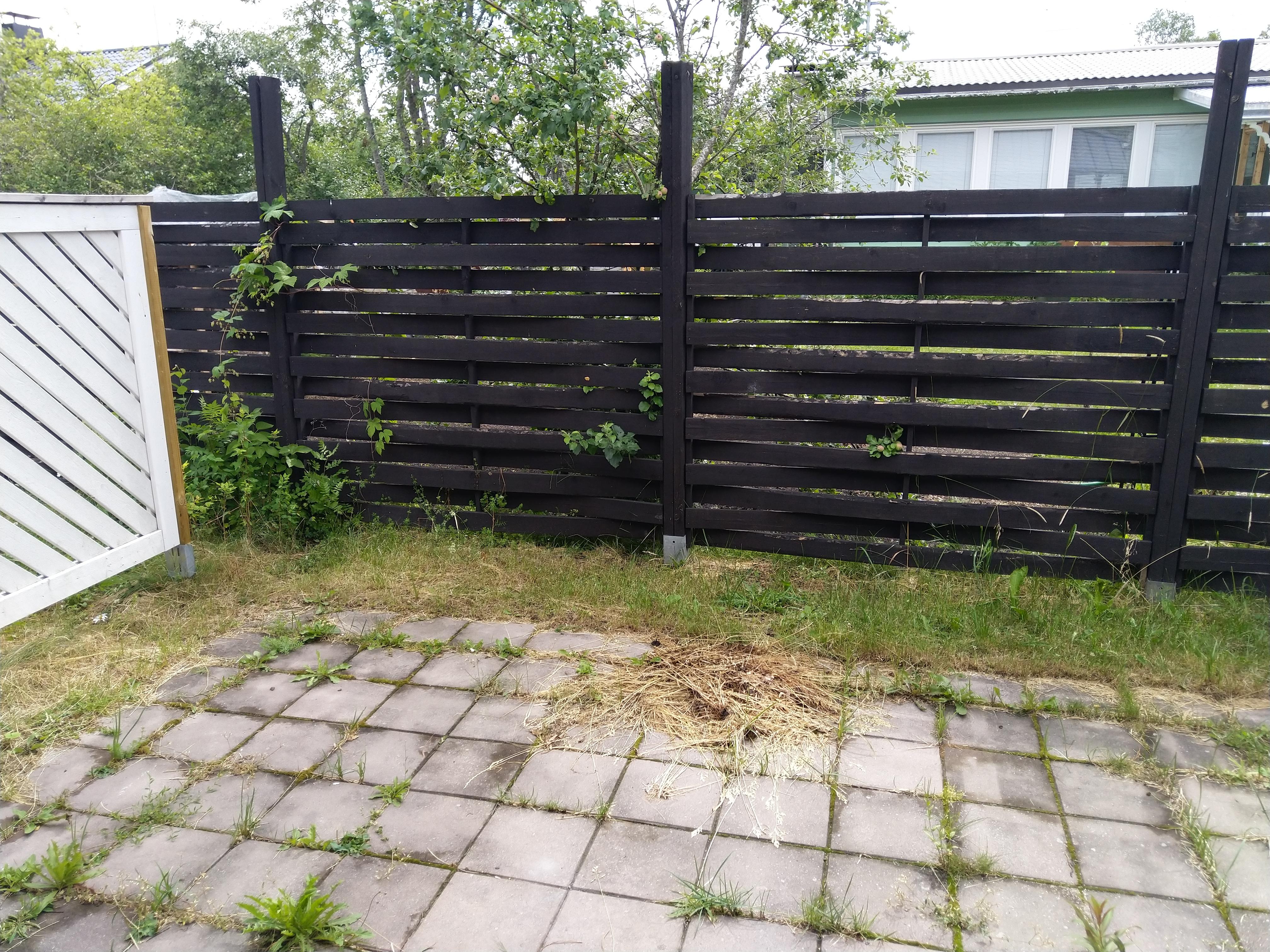 Holmanojankatu 3 As., Loimaa